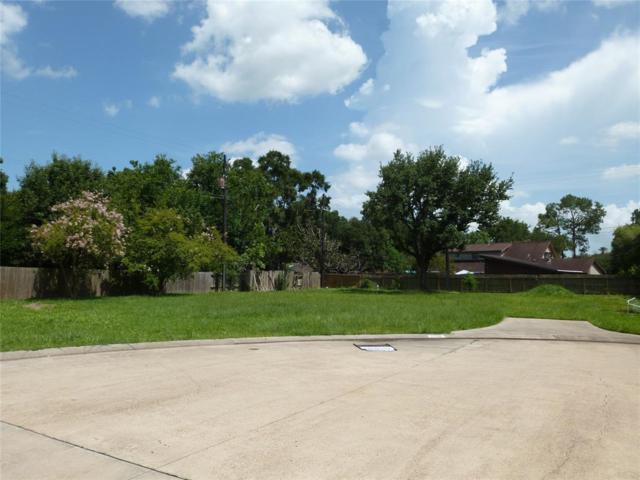 2510 Dauphin Court, Nassau Bay, TX 77058 (MLS #43875067) :: The Jill Smith Team