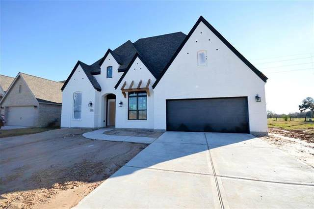 30723 Sunny Meadow Dr, Fulshear, TX 77441 (MLS #43930979) :: The Bly Team