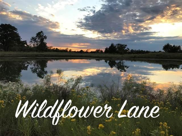 13187 Wildflower Lane, Iola, TX 77861 (MLS #44000930) :: The Wendy Sherman Team