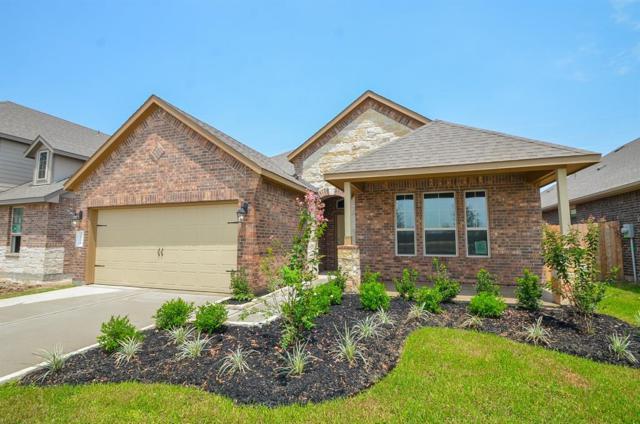 3831 Palmer Meadow Court, Katy, TX 77494 (MLS #44003546) :: Magnolia Realty