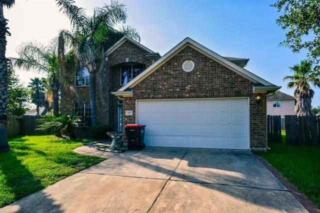 16710 New Market Lane, Houston, TX 77083 (MLS #44012516) :: NewHomePrograms.com LLC