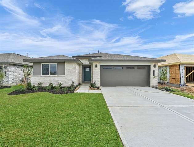 13227 Silver Egret Lane, Texas City, TX 77568 (#44022661) :: ORO Realty