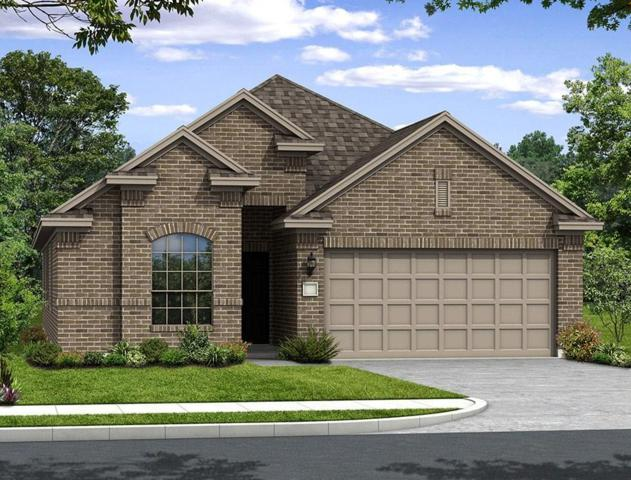 317 Terra Vista Circle, Montgomery, TX 77356 (MLS #44034511) :: The SOLD by George Team