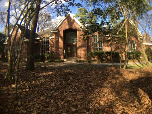 7 Red Sable Point Point, Spring, TX 77380 (MLS #440496) :: Krueger Real Estate