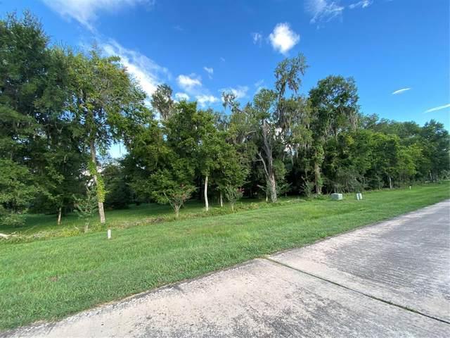 3035 Wellspring Lake Drive, Fulshear, TX 77441 (MLS #44065779) :: The Property Guys