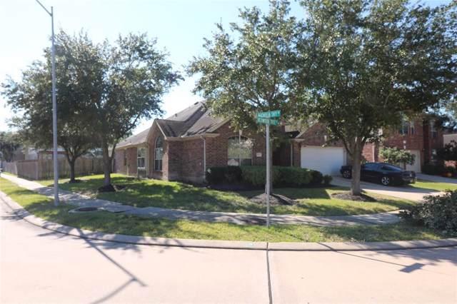 19703 Redwood Tree Street, Richmond, TX 77407 (MLS #44073811) :: Christy Buck Team