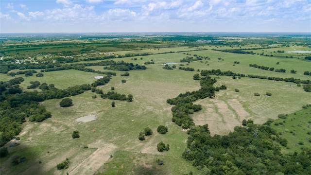 0130 Cr 446, Navasota, TX 77868 (MLS #44109269) :: The Sansone Group