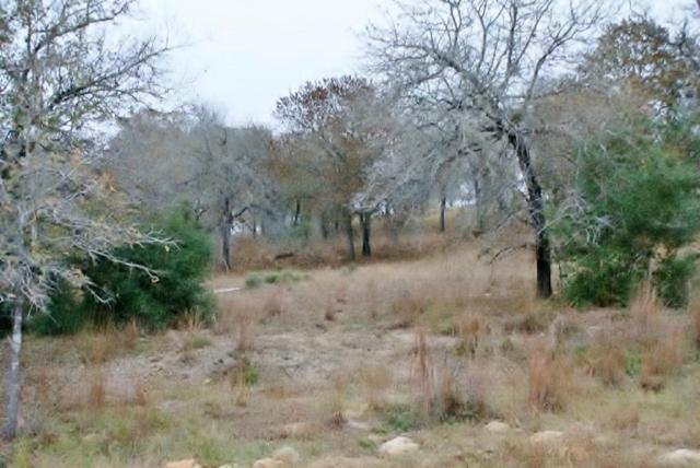 TBD Flash Circle, Luling, TX 78648 (MLS #4412014) :: Giorgi Real Estate Group