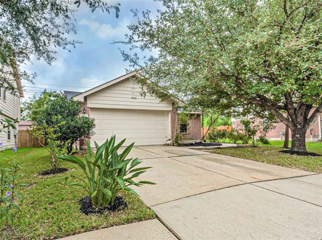 10606 Gold Finch Road, Baytown, TX 77523 (MLS #44135020) :: The SOLD by George Team