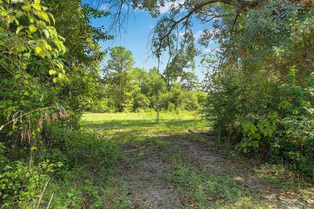 218 Dogwood Trail, Magnolia, TX 77354 (MLS #44156859) :: The SOLD by George Team