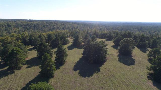 1820 An County Road 156, Palestine, TX 75801 (MLS #44187710) :: Texas Home Shop Realty