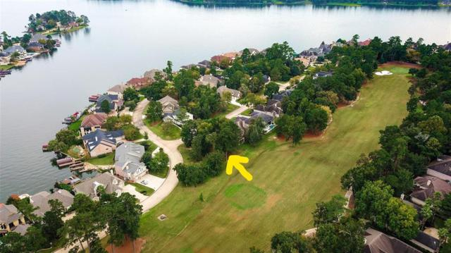 3 W Shore Lane, Montgomery, TX 77356 (MLS #44271688) :: The Freund Group