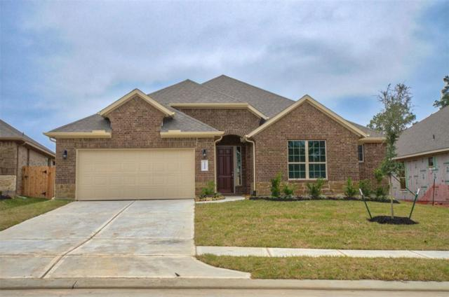 14149 Emory Peak Court, Conroe, TX 77384 (MLS #44273473) :: Texas Home Shop Realty