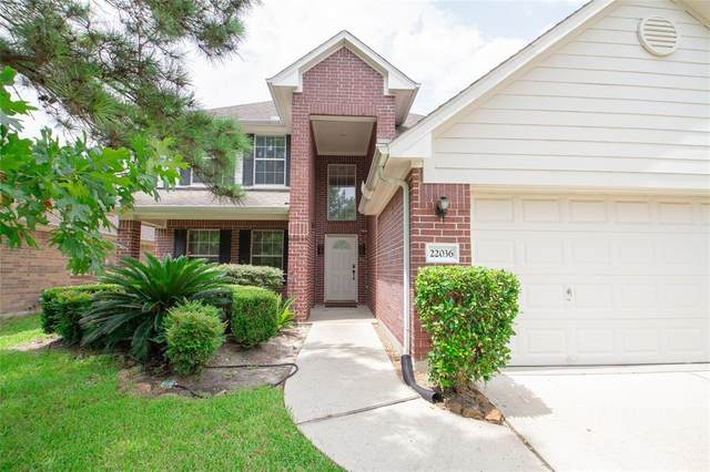 22036 Knights Cove Drive, Kingwood, TX 77339 (MLS #44277772) :: The SOLD by George Team