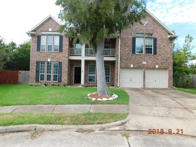 8003 Spring Bluebonnet Drive, Sugar Land, TX 77479 (MLS #44299077) :: The Johnson Team