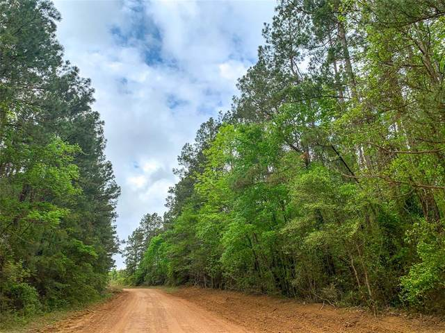00 Nursery Rd, Livingston, TX 77351 (#44377047) :: ORO Realty