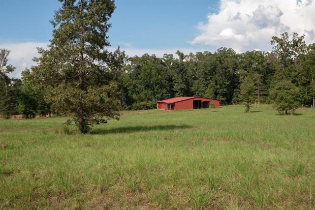 00 County Road 3240, Colmesneil, TX 75938 (MLS #44454084) :: Texas Home Shop Realty