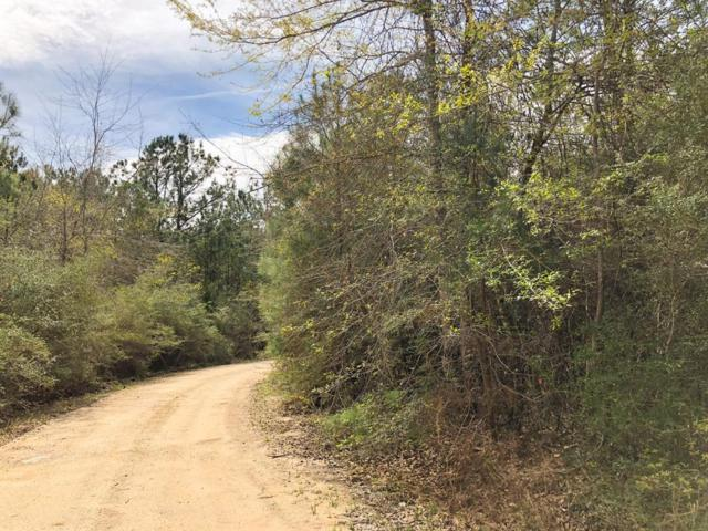 00 County Rd 3132, Mauriceville, TX 77626 (MLS #44524334) :: The Parodi Team at Realty Associates