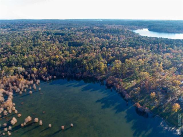 07 County Road 219/Mill Creek Acres, Brookeland, TX 75931 (MLS #44553360) :: Connect Realty