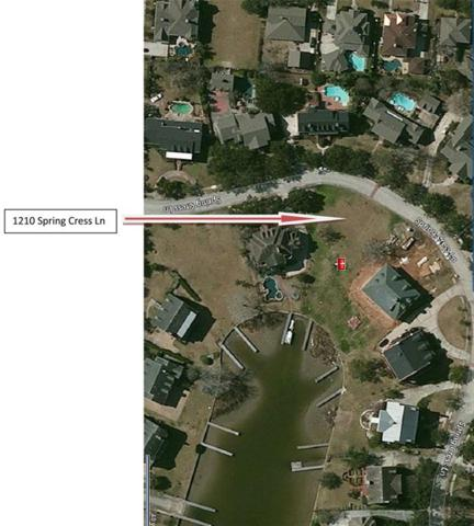 1210 Spring Cress Lane, Seabrook, TX 77586 (MLS #44583874) :: The SOLD by George Team