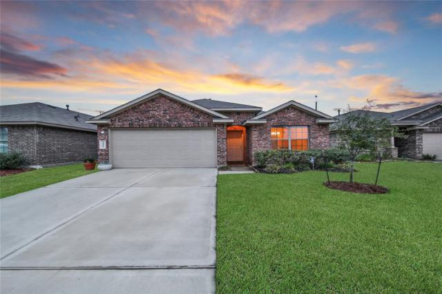 24410 Yellow Thyme Drive, Spring, TX 77373 (MLS #44596439) :: Caskey Realty