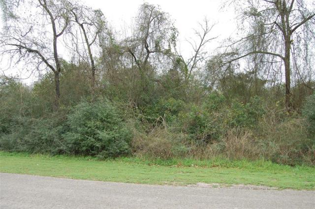 0 Galway Street, Hempstead, TX 77445 (MLS #44699129) :: Fairwater Westmont Real Estate