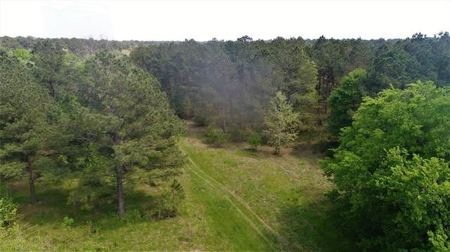 1028 N Possum Walk Road, Groveton, TX 75862 (MLS #44718221) :: Bray Real Estate Group