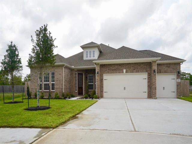2703 Topaz Cove Lane, Rosharon, TX 77583 (MLS #44732073) :: Connect Realty