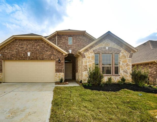 12164 Pearl Bay Lane, Conroe, TX 77304 (MLS #44746832) :: Giorgi Real Estate Group