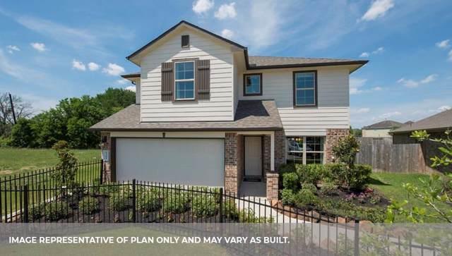 806 Green Clover Lane, Rosharon, TX 77583 (MLS #44772353) :: Texas Home Shop Realty
