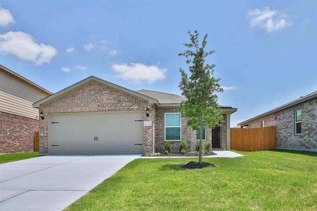 20710 Nala Bear Drive, Hockley, TX 77447 (MLS #44794625) :: The Sansone Group