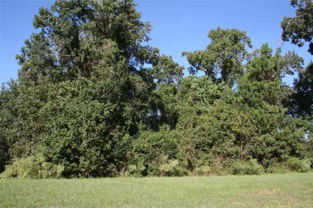 106 Commons Lake Drive, Huffman, TX 77336 (MLS #44817949) :: Caskey Realty
