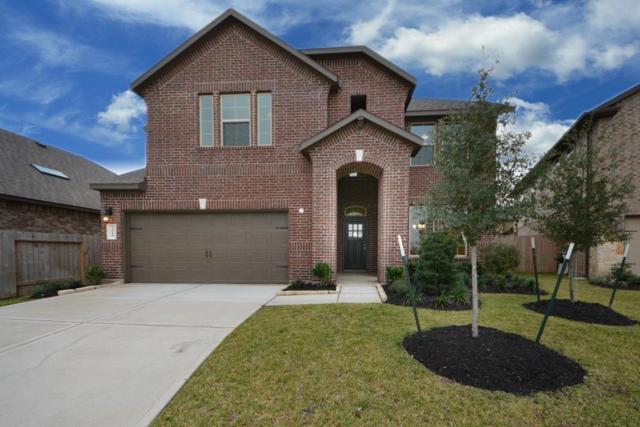 3610 Daintree Park Drive, Katy, TX 77494 (MLS #44982888) :: Magnolia Realty