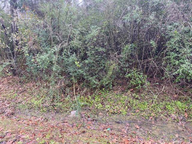 Lot 2 Water Oak Drive, Channelview, TX 77530 (MLS #44999574) :: The Queen Team