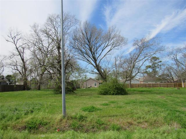 0 Dr Martin Luther King Jr Drive, La Porte, TX 77571 (MLS #45033100) :: The SOLD by George Team