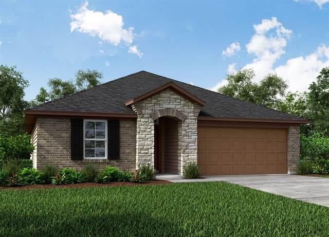 8714 Mugwort Drive, Rosenberg, TX 77469 (MLS #45104481) :: Homemax Properties