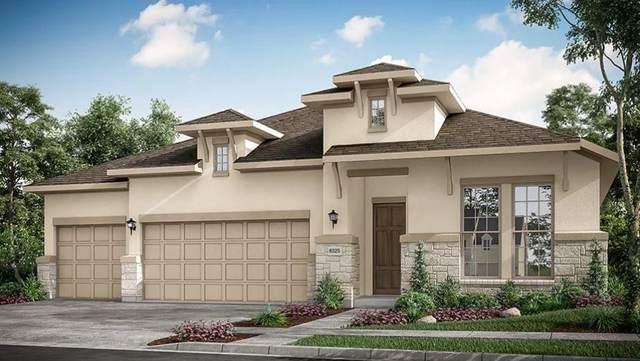 146 S Wild Petunia Trail, Montgomery, TX 77316 (MLS #45132039) :: The Home Branch