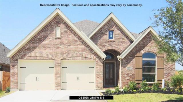 6714 Monarch Falls Lane, Katy, TX 77493 (MLS #45133378) :: Christy Buck Team
