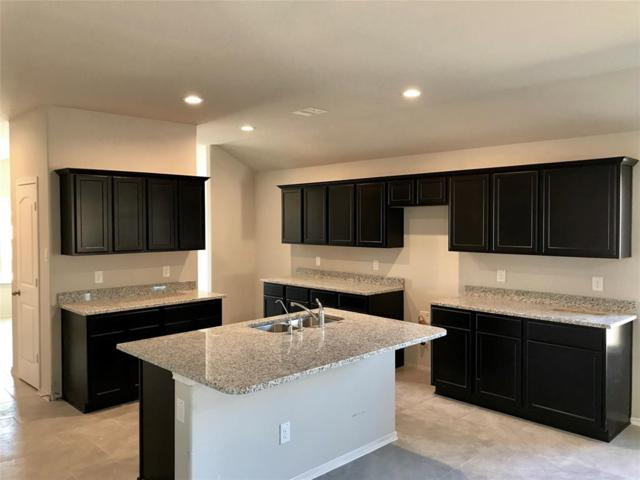 10146 Shagbark Hickory, Tomball, TX 77375 (MLS #45135333) :: The Collective Realty Group