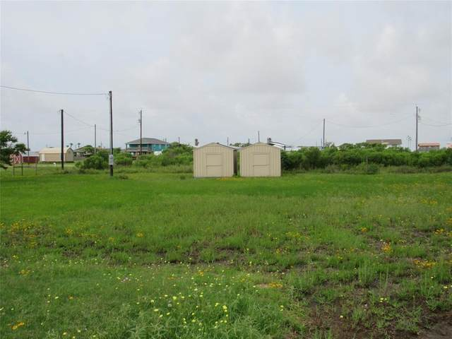 239 White Cap, Sargent, TX 77414 (MLS #45210827) :: My BCS Home Real Estate Group