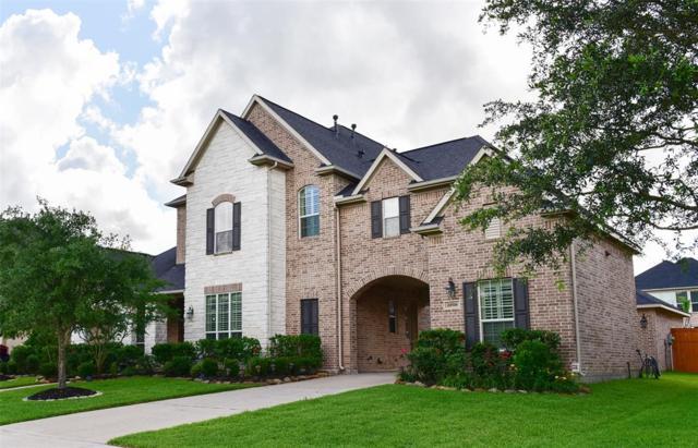 28518 Wild Mustang Lane, Fulshear, TX 77441 (MLS #45352437) :: Christy Buck Team