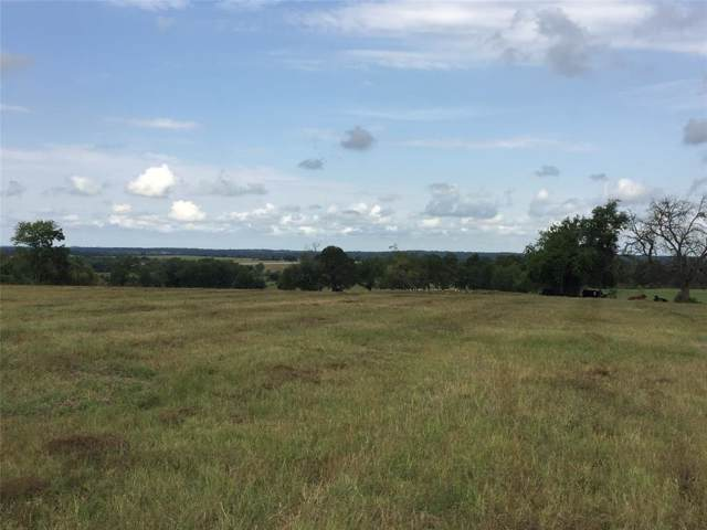 4581 County Road 222, Anderson, TX 77830 (MLS #45426184) :: TEXdot Realtors, Inc.