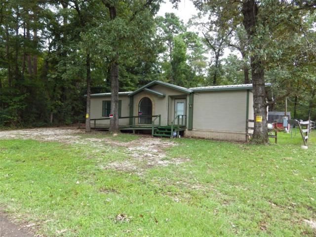 118 Woodduck Lane, Trinity, TX 75862 (MLS #45438428) :: Magnolia Realty