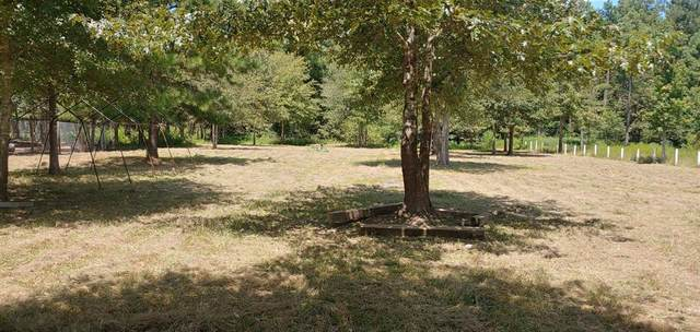 2231 County Road 3405, Cleveland, TX 77327 (MLS #45592797) :: The Property Guys