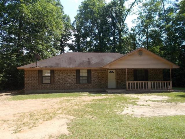 324 Sir Jim Drive, Woodville, TX 75979 (MLS #45615490) :: The SOLD by George Team