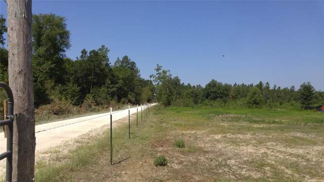 2090 Tom Marsh Road, Livingston, TX 77351 (MLS #45630925) :: The SOLD by George Team