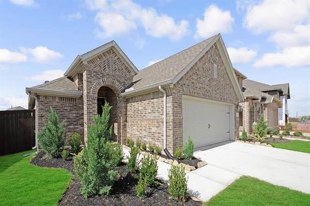 32034 Quail Terrace Lane, Conroe, TX 77385 (MLS #45685210) :: Giorgi Real Estate Group