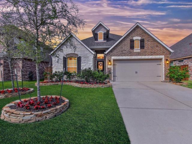 24422 Peroni Drive, Richmond, TX 77406 (MLS #4570484) :: Connect Realty