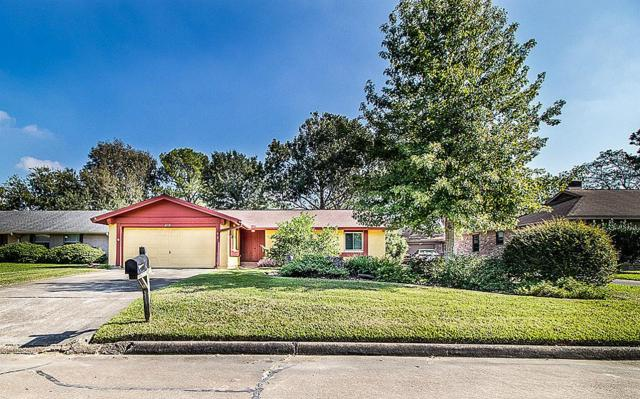 16723 Hibiscus Lane, Friendswood, TX 77546 (MLS #45796254) :: REMAX Space Center - The Bly Team