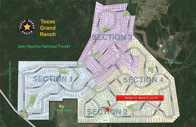 2-6-70 Hereford Trail, Huntsville, TX 77340 (MLS #45838663) :: The SOLD by George Team